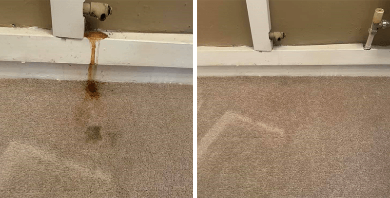 Stain removal on carpet before and after